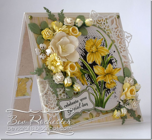 bev-rochester-noor-daffodils2