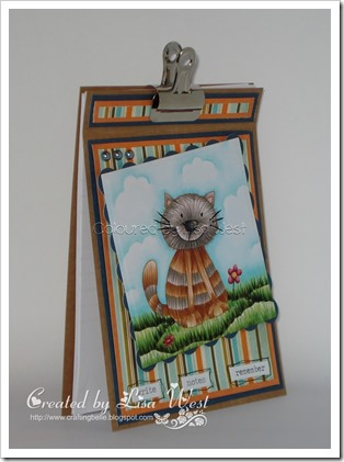 Calvin Cat Notebook (3)
