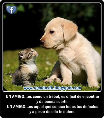 Imagenes Con Frases De Amistad Para Facebook - Frases de Amistad con Lindas Imágenes para Compartir
