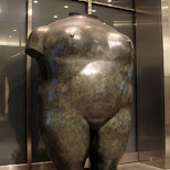 female body in New York City, New York, United States