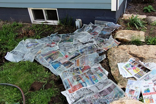 recycle newspapers in the garden