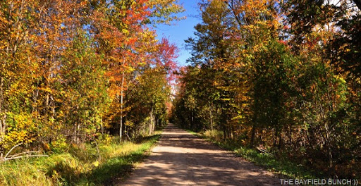 Just Another Unbelievably Beautiful Autumn Day Here In Southern Ontario U0026  It Is These Days I Consider To Be The Very Best Weather Days Of The Entire  Year.