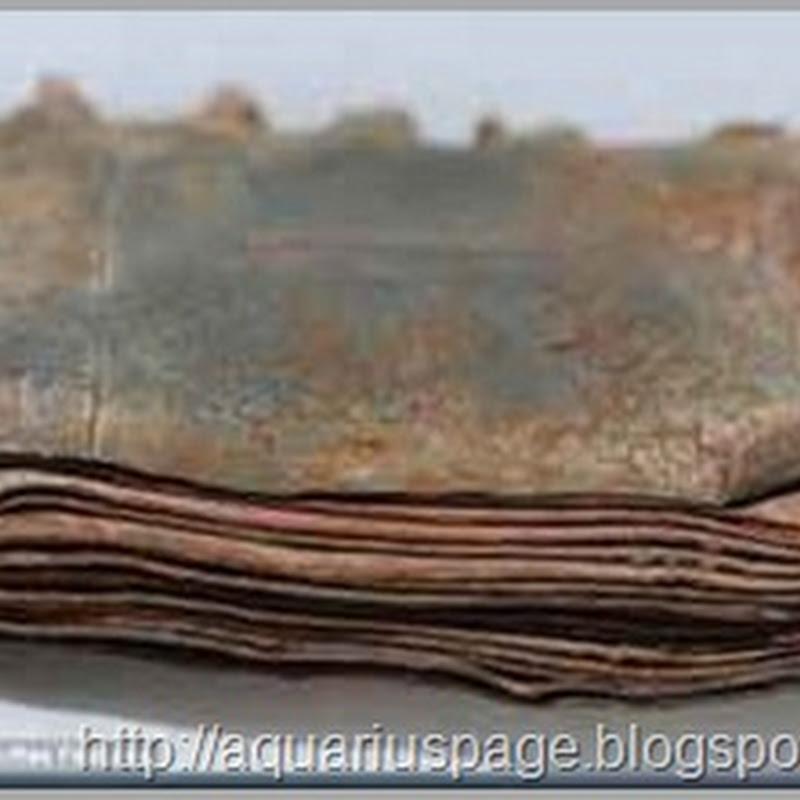 Setenta livros de metal encontrados em caverna na Jordânia
