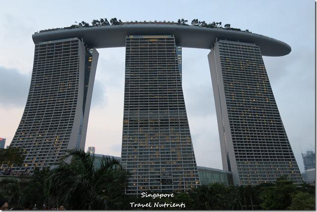 新加坡超級樹燈光秀 (10)