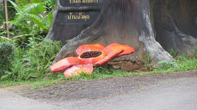 A fake concrete rafflesia adorning the entrance of a guesthouse.