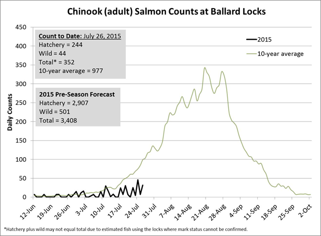 Chinook (adult) salmon counts at Ballard Locks, Seattle, for 2015 run, compared with 10-year average. Graphic: Washington Department of Fish and Wildlife