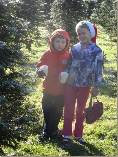 11-27 Christmas tree 4