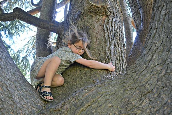 tree climbing Belle