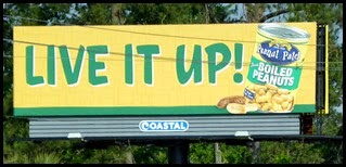 02b - It's a Southern Thing - Billboard Ad