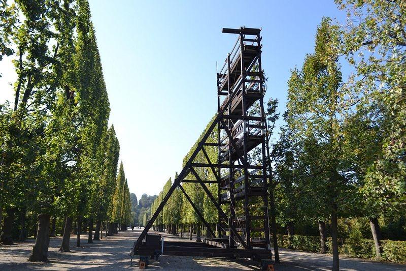 schönbrunn-palace-trimmed-trees-7