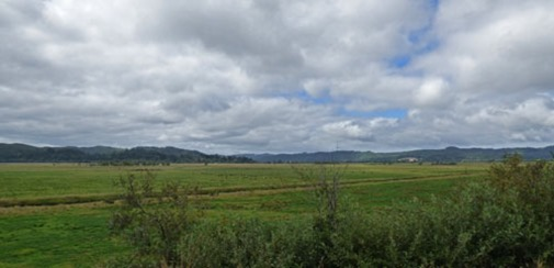 Highway 42 between Coos Bay and Tri-City