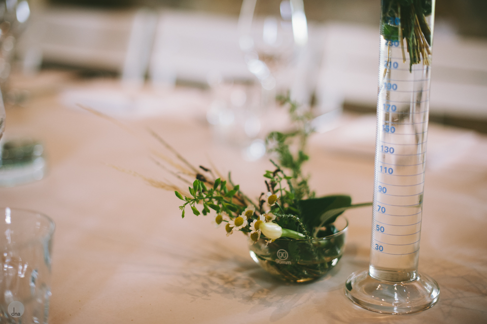 Adéle and Hermann wedding Babylonstoren Franschhoek South Africa shot by dna photographers 45.jpg