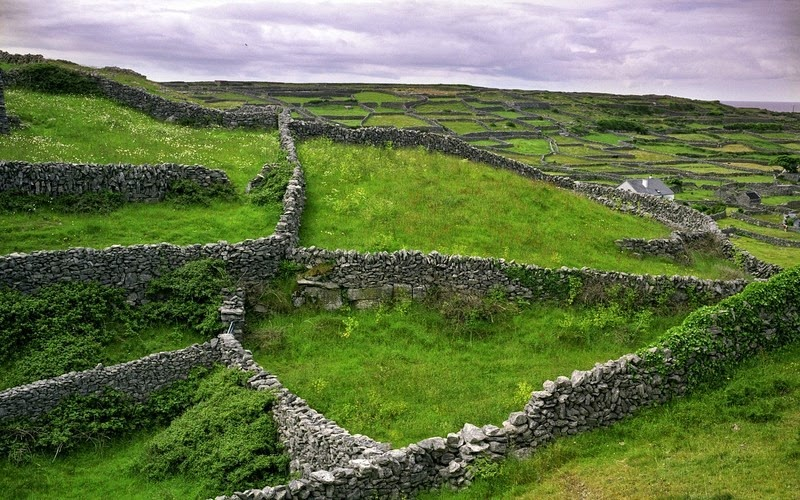 stone-walls-ireland-1