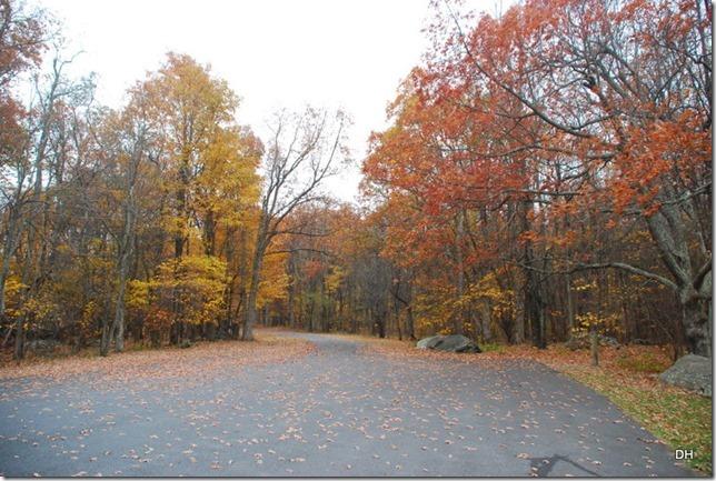 10-23-15 A Skyline Drive Shenandoah NP (69)