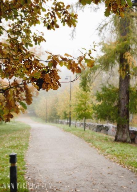 6-Autumn
