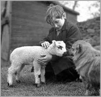 evolução-dos-animais-e-o-espiritismo