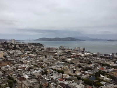 Coit Tower Views