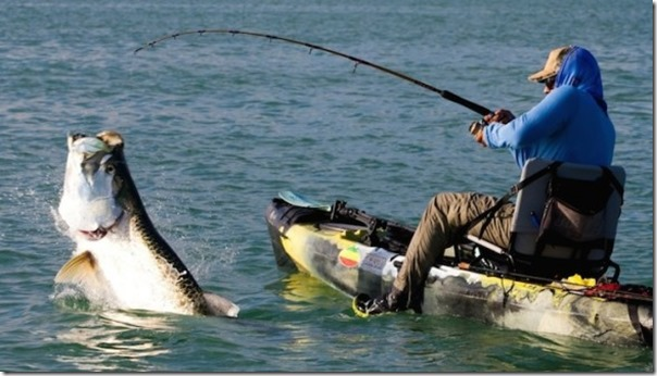 Kayak-fishing-Matt-harris-585x333