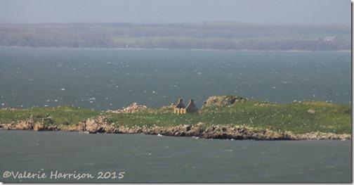 7-Murray-Isles