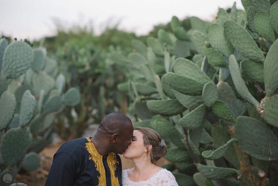 Hannah and Pule wedding Babylonstoren Franschhoek South Africa shot by dna photographers 1002.jpg