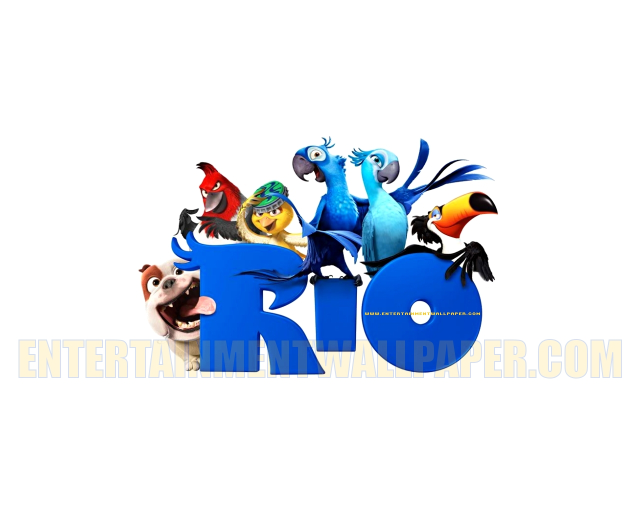 We went to the movie Rio,