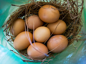 Oftentimes when you buy eggs in the market in Madagascar, they build a little nest to hold them in the plastic bag, to help keep them from getting broken along the way.  Very cool!