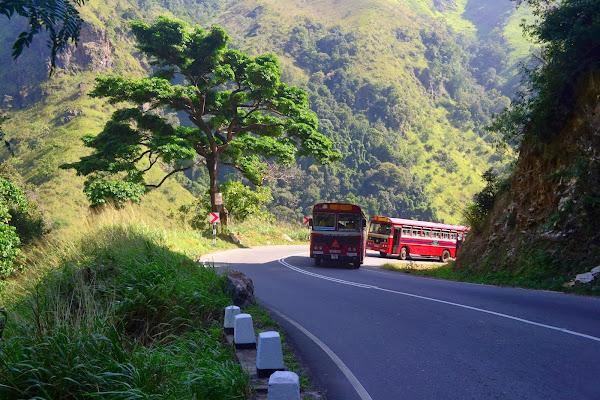 Автобусы на горной дороге, Элла, Шри Ланка