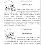 H-Leitura Informativa - Hipopótamo.jpg