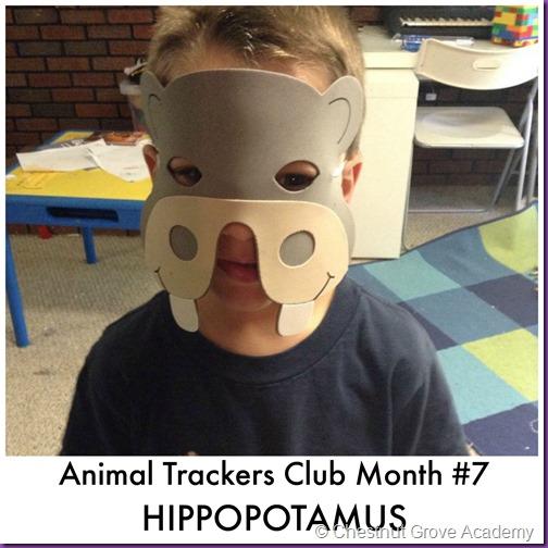 Animal Trackers HIPPOS