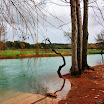 Portugal » Olhos de Água - Alviela