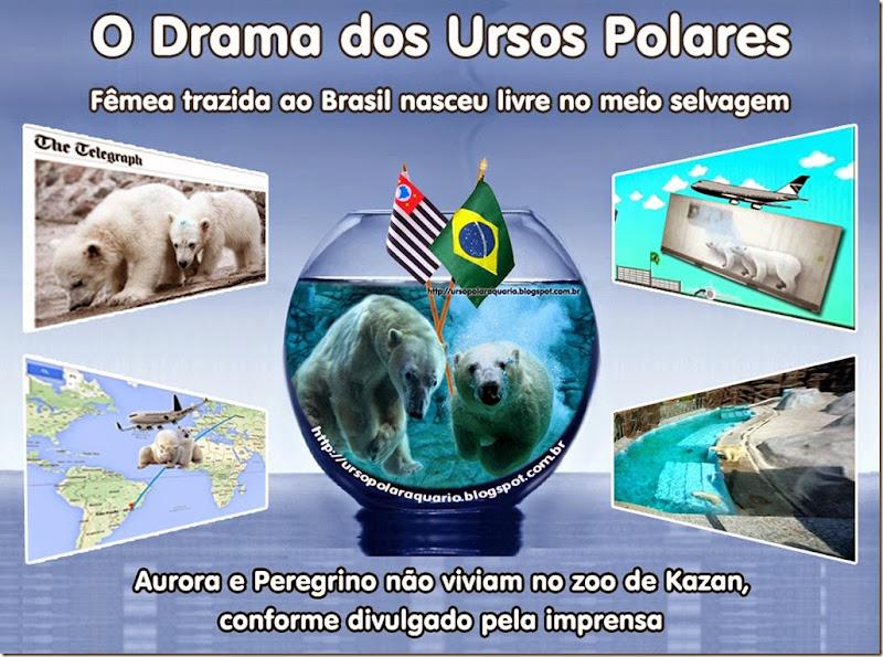 drama_ursospolares
