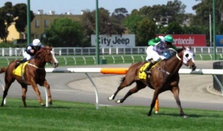 race 6_top of straight 2