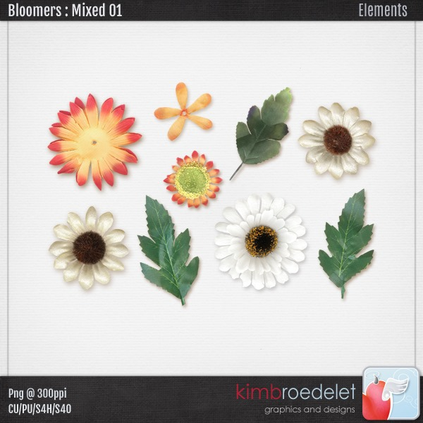 kb-Bloomers_M-1