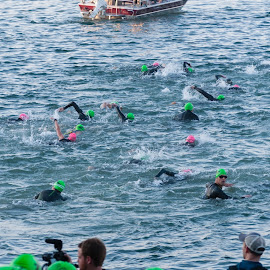 They're Off by Brianne Toma - Sports & Fitness Swimming ( america, fitness, sports, northwest, lake, depth, swimmer, idaho, field, coeur d'alene, pattern, rule of thirds, swim, action, grid, ironman, nikon, competition )