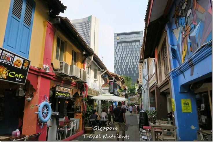 新加坡 哈芝巷 (4)
