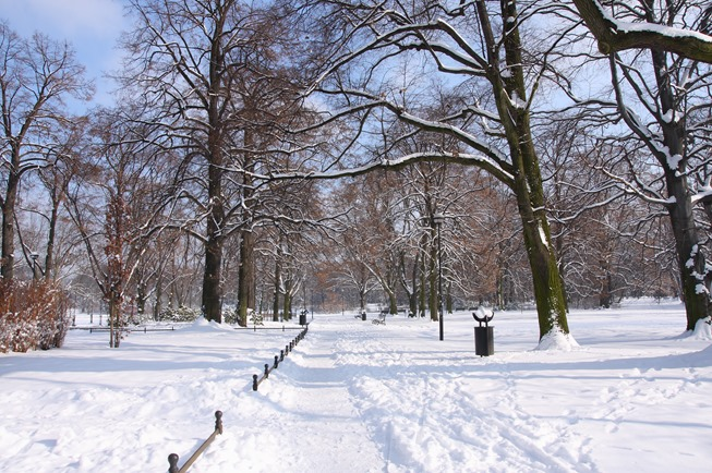 winter-in-the-park_zkMJbBid