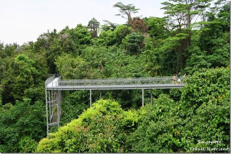 新加坡花柏山 (65)