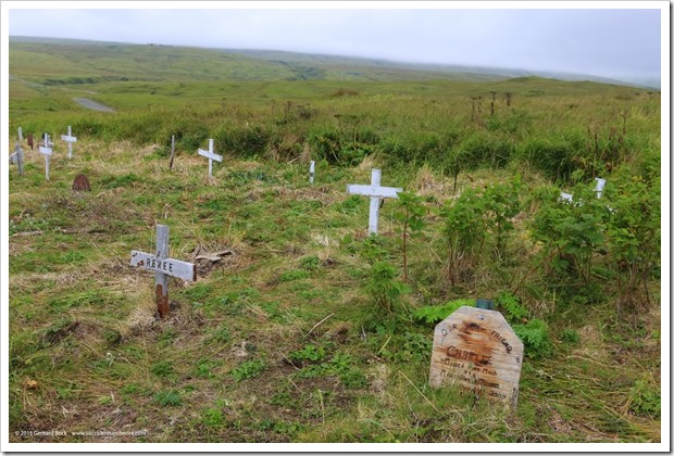 150907_Adak_pet_cemetery3_WM
