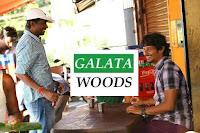 Jeeva Next Movie After Pokkiri Raja Is Titled As Gemini Ganesan
