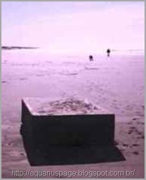 misteriosas-caixas-que-gemem