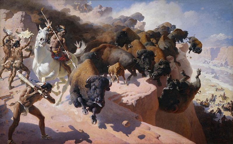 buffalo-jump-12