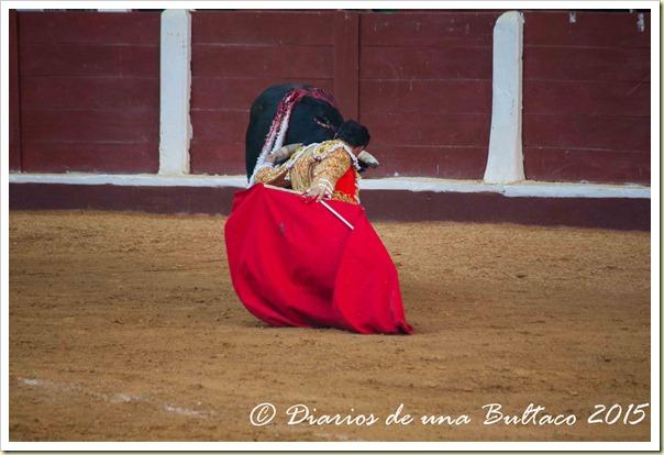 Toros Feria 2015-9823