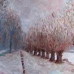 Neige sur la route des etangs.JPG