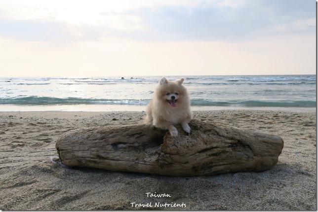小琉球威尼斯海灘 (28)