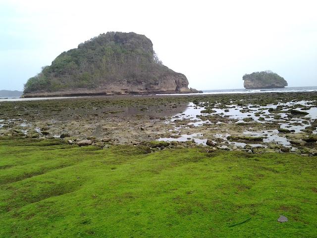 Percutian ke Pantai Gua Cina Malang Indonesia. Terletak di Malang