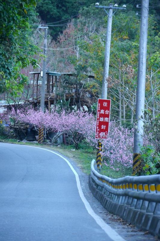 2014_0201-0207 轆轆溫泉 花東3日行_013