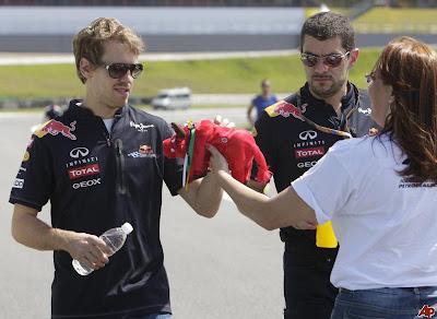Себастьян Феттель получает в подарок бычка на Гран-при Бразилии 2011