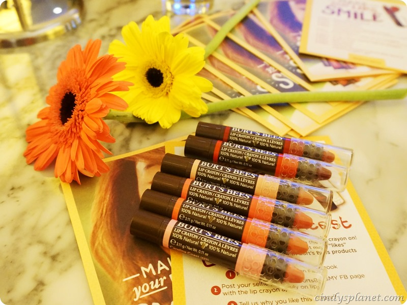 Burts Bees Lip Crayon Review1