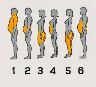 lemak pada badan