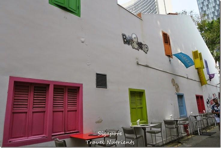 新加坡 哈芝巷 (17)